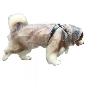Finally a raincoat for XL dogs!
